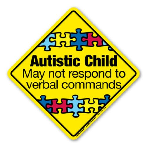 Autism Warning Decal
