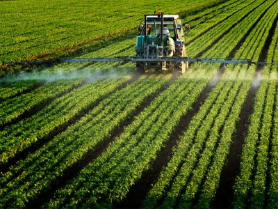 Pesticides Could Be Linked To Autism